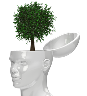 tree_growing_out_of_head_800_clr_15455
